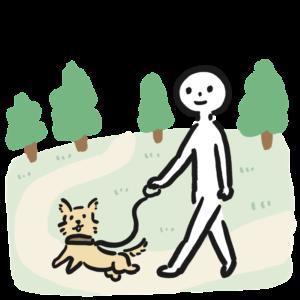 散歩をする